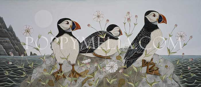 Three puffins, Skelligs
