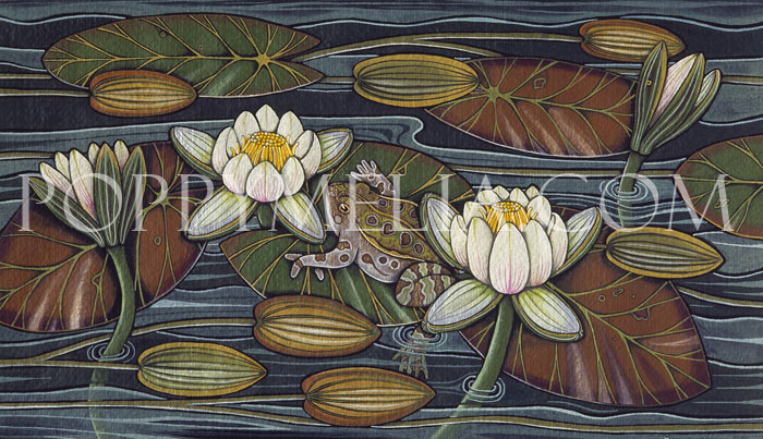 Frog and Waterlilies Painting by Poppy Melia