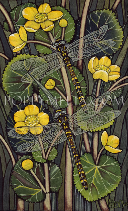 Dragon Flies and Kingcups Painting by Poppy Melia